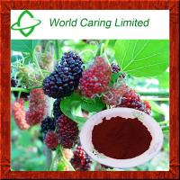 Buy cheap Cosmetic Ingredient Morus alba extract 10:1 TLC from wholesalers