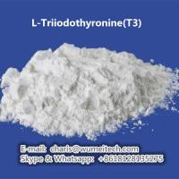Buy cheap Sportsman Anabolic Steroids L-Triiodothyronine (T3) Raw Steroid Powder For Human Growth product