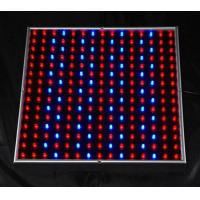 Buy cheap 450lm 14W indoor led grow lights panel systems AC90 - 240V for greenhouse lighting from wholesalers