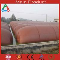 Buy cheap 10m3 Medium Size Anaerobic Digester China Biogas Plant from wholesalers