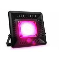Buy cheap Indoor Grow Kits 200W Led flood Growth Light For Greenhouse High Bright from wholesalers