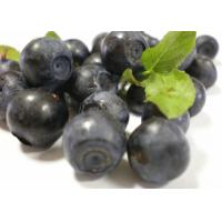 Buy cheap Skin Care Bilberry Fruit Powder , Organic Fruit And Vegetable Powders Trace Element from wholesalers