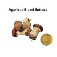 Buy cheap Agaricus Blazei Extract Promoting Hematopoiesis , Ji / Pine Medicinal Mushroom Powder from wholesalers
