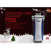 Buy cheap Cooling Sculpting Vacuum RF Lipolaser Cryolipolysis Slimming Machine CE Approved from wholesalers