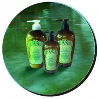 Buy cheap Fresh Oil Control Dandruff Herbal Hair Shampoo , 292ml--350ml #ST-292-297 product