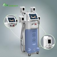 Buy cheap weight loss beauty equipment / Coolsculpting machine / cryolipolysis slimming machine from wholesalers