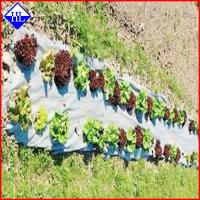 Buy cheap Agriculture Nonwoven Garden Weed Control Sheet / Landscape Fabric Ground Cover from wholesalers