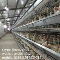 Buy cheap Hot selling 96 birds 4-tiers galvanizing H type poultry battery cages for layers in kenya chicken farm from wholesalers