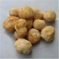 Buy cheap monkey-head mushroom extract from wholesalers