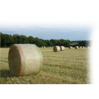 Buy cheap Hdpe Raschel Knitted Round Bale Net Wrap , Agriculture Hay Bale Net from wholesalers