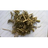 Buy cheap Motherwort herb HERBA LEONURI Leonurus japonicus Houtt whole plants Traditional herb medicine Yi mu cao from wholesalers