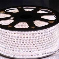 Buy cheap LED Rope Light for Decorations, Energy-saving, Available in Various Sizes/Colors, SMD 3528/5050 from wholesalers