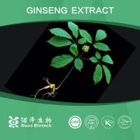 Buy cheap Wholesale supply free sample Ginseng Extract from wholesalers
