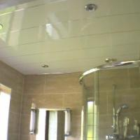 Buy cheap Mouldproof UPVC Wall Panels Ceiling Covering Roof For Shower from wholesalers