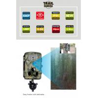 Buy cheap Wholesales The Best Sports Camera 2.4 TFTLCD  Animal Tracking Wildlife Digital Camera DVR Vedio Camera Made In China from wholesalers