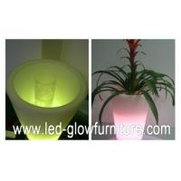 Buy cheap Round / Square / Cube and champagne LED Flower Pots lights , multi - colored led planter pots from wholesalers