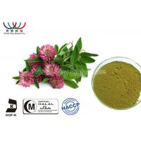 Buy cheap Food Grade Natural Botanical Extracts , Red Clover Leaf Extract Relieve Menopausal Symtoms product