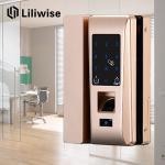 Buy cheap Smart Apartment Glass Door Lock Support Password Fingerprint 188mm * 111mm from wholesalers