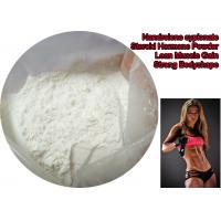 Nandrolone Cypionate Steroid Hormone Powder For Lean Muscle Gain Enhance Sex CAS 601-63-8