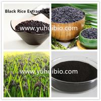 Buy cheap black rice extract supplement,purple rice powder,purple rice extract from wholesalers