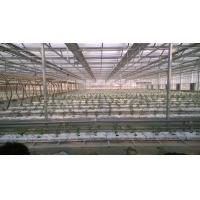 Buy cheap Hydroponic Coco Peat Fiber Filled Plant Growing Bags from wholesalers