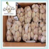 Buy cheap 2015 China supplier dehydrated 4.5-6.0cm normal white garlic price from wholesalers
