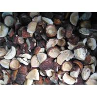 Buy cheap Sell hot sale boltetus mushroom from wholesalers