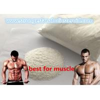 Buy cheap High Pure GW - 501516 / Cardarine Popular Sarms Gw1516 GSK-516 for Fat Loss from wholesalers