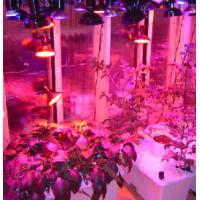 Buy cheap 90w LED grow light Hydroponic Fertilizer from wholesalers