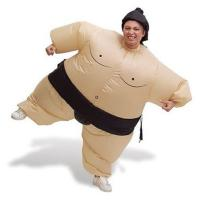 Buy cheap Sumo Wrestler Inflatable T Rex Costume , Adult Fat Inflatable Baymax Costume from wholesalers