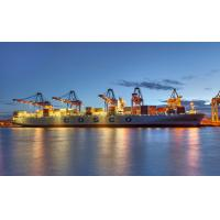 Buy cheap Sea Freight to Rotterdam,Netherlands from wholesalers