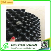 Buy cheap root control container for plant and flower plastic control the root container plastic root control container from wholesalers