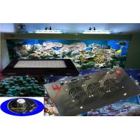 Buy cheap Dimmable Led Aquarium Lighting , Energy Saving Coral Reef Lighting from wholesalers