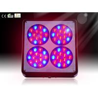 China Apollo 4 60*3w Indoor plants growing led light, greenhouse led lighting on sale