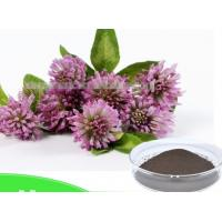 Buy cheap China supply Red clover Extract powder Deep green powder from wholesalers