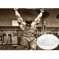 Buy cheap Effective Raw Steroid Powder Tibolone Accetate For Muscle Gainning 5630-53-5 from wholesalers