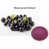 Buy cheap Natural Blackcurrant  Anthocyanin Extract Powder UV Improving Immunity Non - GMO from wholesalers