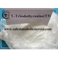 Buy cheap CAS 55-06-1 Fat Loss Hormones Natural Weight Loss Powder T3 Hormones L-Triiodothyronine from wholesalers