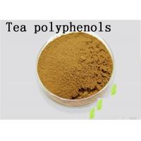 Buy cheap Antioxidant Natural Green Tea Extract Tea Polyphenols Catechins EGCG Brown from wholesalers