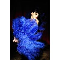 Buy cheap plumage for wedding centerpieces ,dyed DIY feather product