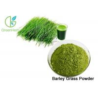 Buy cheap Green Fine Barley Grass Powder / Barley Grass Juice Powder Lower Blood Sugar from wholesalers