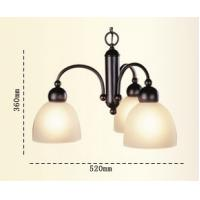 Buy cheap American Style Simple design Iron Art Resin decorate Chandeliers Reading Lamps from wholesalers