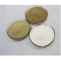 Animal Nutrition Amylase Powder For Baking , Fungal Amylase Normal Fermentation Odour