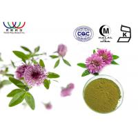 Buy cheap CAS 85085 25 2 Red Clover Extract Powder 20% Isoflavones Benefits For Menopause Women'S Health from wholesalers