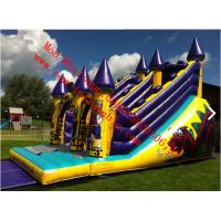 Buy cheap Dragons Lair Inflatable Slide from wholesalers