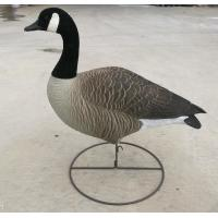 Buy cheap Full Body Cananda Goose hunting Decoy Standing Field Goose Decoy with Round base from wholesalers