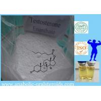 Buy cheap 315-37-7 Anabolic Steroid Powder Testosterone Enanthate / Test E For Muscle Increase from wholesalers