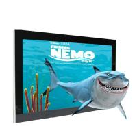 China Full HD 1080P Glasses Free 3d Display , High Resolution 48 Inch Glassless 3d Monitor on sale