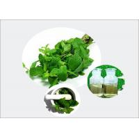 Buy cheap Organic Peppermint Extract Natural Essential Oil 50% Min for Flavouring from wholesalers