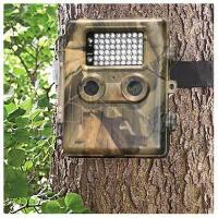 Buy cheap 10MP Trail Camera With LCD Monitor & Laser Light & Optical Filter,54pcs LED up to 8GB from wholesalers
